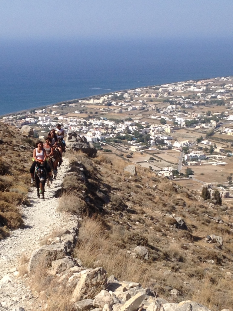 People ride donkeys up Meso Vouno. They probably did not sweat like me.